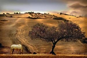 Bibione turismo rurale